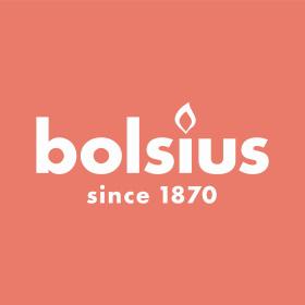 Praca Bolsius Polska Sprzedaż