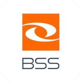 Praca Business Support Solution Spółka Akcyjna (BSS)