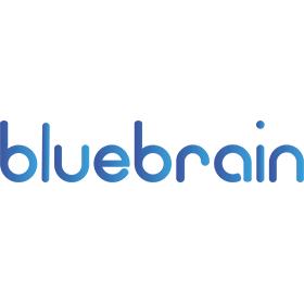 Praca BlueBrain Sp z o.o. Sp.k