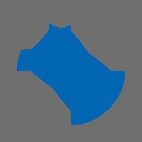 Praca Dealer BMW TEAM.