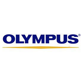 Praca OLYMPUS BUSINESS SERVICES Sp. z.o.o